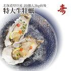 殻付生牡蠣カキ北海道厚岸マルえもん希少な特大3Lサイズ(1個約150g)20個セット生食可お取り寄せギフト父の日母の日内祝い