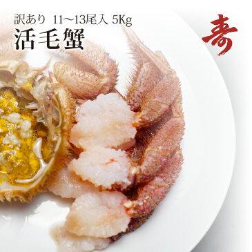 毛ガニ カニ 訳あり 5kg 前後 11〜13尾 北海道産 冷蔵 毛がに 蟹 活蟹 刺し身