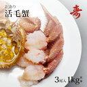 毛ガニ カニ 訳あり 300g〜400g 前後 3尾 北海道産 冷蔵 毛がに 蟹 活蟹 刺し身
