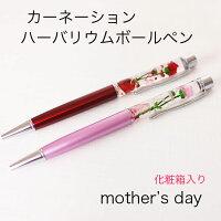 ハーバリウムボールペンボールペン母の日カーネーションかすみ草のハーバリウムプレゼント化粧箱入り