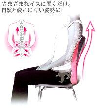 骨盤矯正/骨盤/姿勢/腰痛/マーナ背すじキープクッション(ピンク)※イス背もたれ用クッション