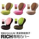 「背筋がGUUUN 美姿勢座椅子 リッチ専用替えカバー」全5色【洗い……