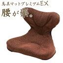 「馬具マットプレミアムEX」【姿勢 腰痛 クッション オフィス 腰痛対策 骨盤クッション 猫背 イス