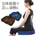 「コジット 腰痛対策クッション」【姿勢 腰の悩み クッション