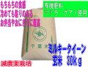 モチモチのミルキークイーン23年産 新米 有機肥料「マドラ・グアノ」使用減農薬栽培 千葉県産ミルキークイーン 玄米30k
