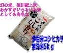 【本州・四国送料無料】【徳川献上米】新米 27年産 多古米コシヒカリ 無洗米 5kg 【楽ギフ…