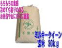 【本州、四国送料無料】千葉県産ミルキークイーン玄米30kgが送料無料で驚きの価格!【ミルキー...