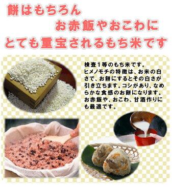 【もち米】29年産 千葉県産 ヒメノモチ 白米 5kg