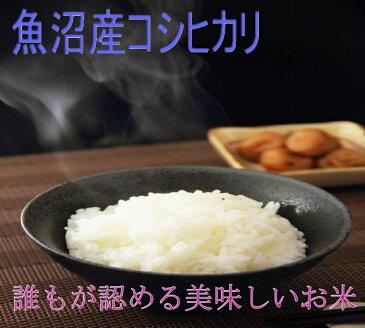 29年産 魚沼産コシヒカリ 無洗米10kg(5kg×2)