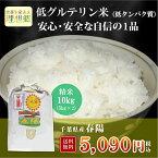 29年産 千葉県産 春陽 (低グルテリン米) 白米 10kg(5kg×2)