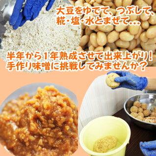 手作り味噌セット(合わせみそ)20歩麹出来上がり約4kg