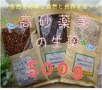 【生薬】ラベンダー生500g(アルバニア産)×1(高砂薬業)