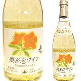 【北海道ワイン】微発泡ナイヤガラ/白(500ml)【4990583230009】「微発泡ナイアガラ」
