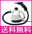 スチームクリーナー ロング 高圧洗浄器 高圧洗浄機 【送料無料】