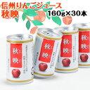 長野県産リンゴジュース