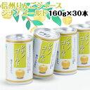 りんごジュース ストレート 無添加 果汁 100% 長野興農 信州りんごジュース シナノゴールド 160g × 30缶