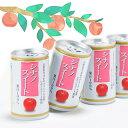 りんごジュース ストレート 無添加 果汁 100% 長野興農 信州りんごジュース シナノスイート 160g × 30缶