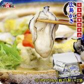 超特大3Lサイズ限定販売!ジャンボ広島かき2kg(1kg×2袋)化粧箱入り[送料無料]【カキ】【牡蠣】【かき】