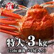 【業務用/産地箱】特大ボイルずわいがに姿3kg(750g前後×4尾入り)[送料無料]【カニ】【かに】【蟹】