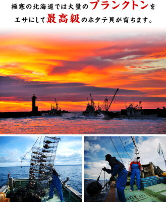 北海道の豊かな漁場