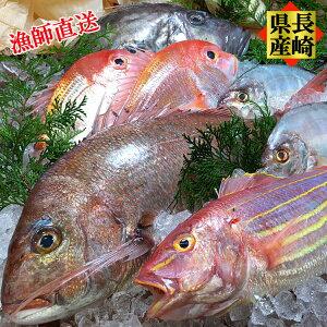 ギフト プレゼント 感謝の気持ち 海鮮 ギフト セット 長崎県産 プレミアム鮮魚セット 新鮮・お刺身・煮つけ・フライ