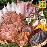 海鮮バーベキューセット【お中元・ギフト】ウチワエビ ヒオウギ貝 サザエ 赤イカ BBQ