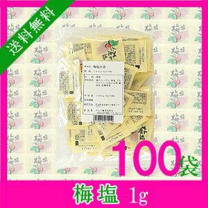 1袋あたり17.3円梅塩 1g×100袋【メール便で送料無料】【小袋塩】【お弁当】【天ぷら】【焼き鳥】