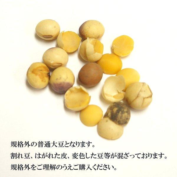 大分県産大豆《大粒》 5kg×5〔チャック付〕/29年産 宅配便  チャック付 大豆 大粒 ふくゆたか 規格外 食物繊維 機能性成分 乾燥豆 豆腐 豆乳 味噌 こわけや