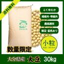 【数量限定入荷】大分県産大豆《小粒》30kg規格外大豆白目大豆
