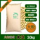 大分県産大豆《大粒》30kg規格外大豆白目大豆