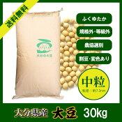 大分県産大豆《大粒》30kg/新物28年産