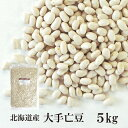 北海道産 大手亡豆 5kg〔チャック付〕 宅配便 チャック付 北海道産 白いんげん豆 乾燥豆 こわけや