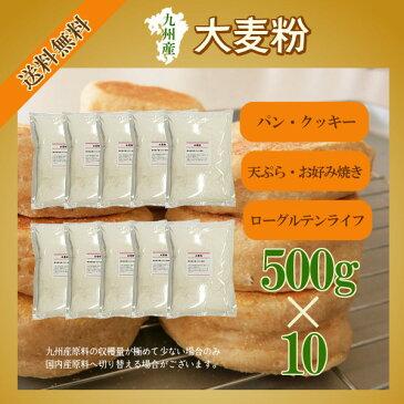 九州産 大麦粉 500g×10/宅配便 送料無料 九州産 グルテンフリー 食物繊維 βグルカン 製菓材料 製パン材料 こわけや