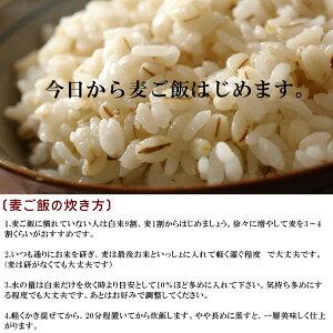 特選丸麦1kg※もち麦とうるち麦混合