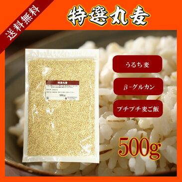 特選丸麦 500g〔チャック付〕/国産 メール便 送料無料 チャック付 国産 特選 大麦 食物繊維 βグルカン こわけや