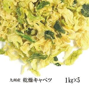 乾燥キャベツ1kg×5/九州産 乾燥野菜 きゃべつ 宅配便 送料無料 九州産 国産 ボイル済み 保存食 時間短縮 スープ こわけや