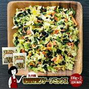 九州産乾燥野菜グリーンミックス100g×2