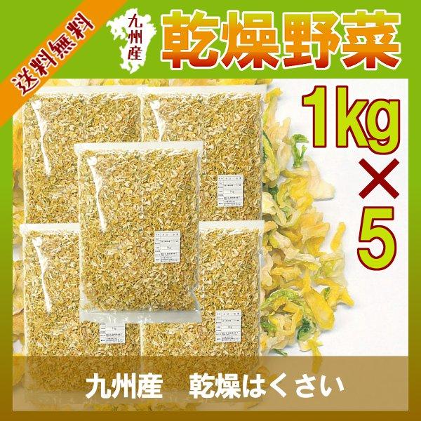 乾燥はくさい 1kg×5/九州産 乾燥野菜 白菜