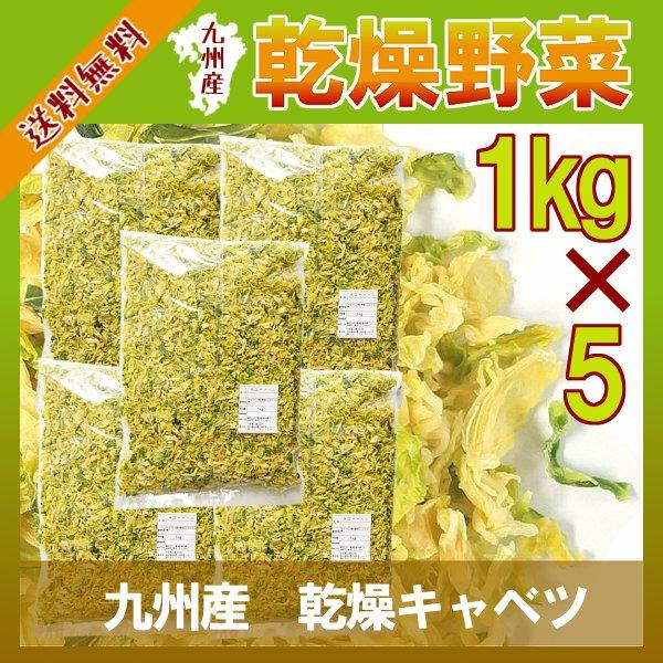 乾燥キャベツ1kg×5/九州産 乾燥野菜 きゃべつ