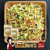 九州産乾燥野菜ミックス100g×2