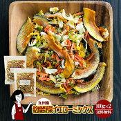 九州産乾燥野菜イエローミックス100g×2
