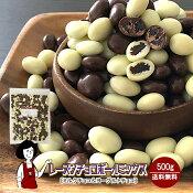 レーズンチョコボールミックス[チョコ&ヨーグルト]500g
