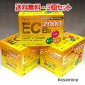 しみ、そばかすに!ビタミンC・E・B2製剤トコスタシーエース【医薬品】