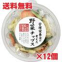 【12個セット】管理栄養士が考えた10種の野菜チップス 150g×12...