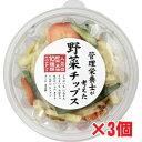 【3個セット】管理栄養士が考えた10種の野菜チップス 150
