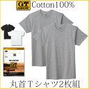 GTホーキンス 綿100%半袖丸首Tシャツ2枚組!グンゼ【メール便可】