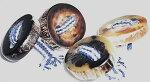 水牛の角の天然皮付きボタン。二つ穴。