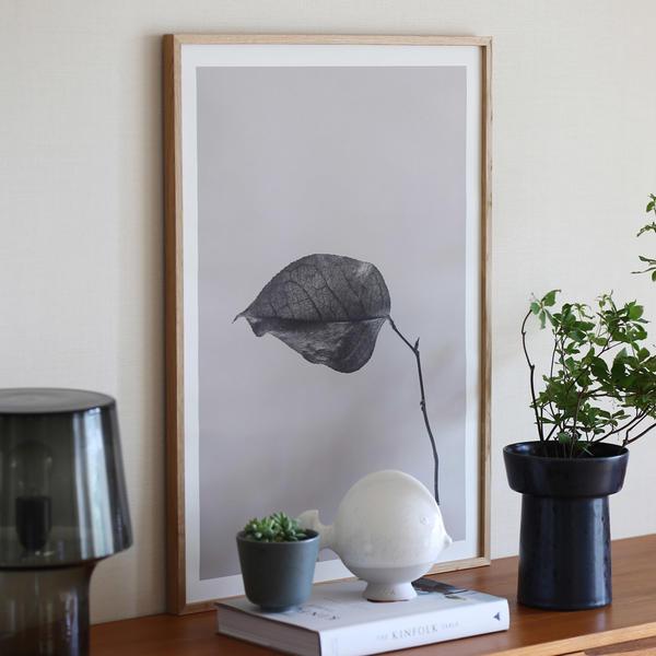 Paper Collective (ペーパーコレクティブ) ポスター 50×70cm Sabi Leaf 03 北欧 インテリア