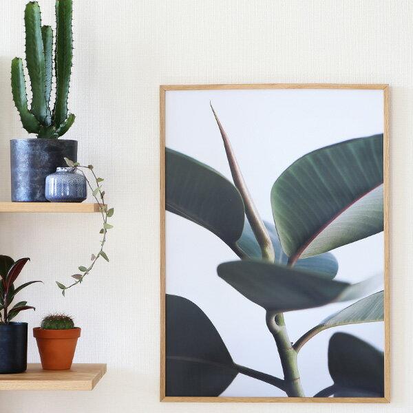 【受注発注】Paper Collective (ペーパーコレクティブ) ポスター 50×70cm Green home 02(グリーンホーム) 北欧 インテリア