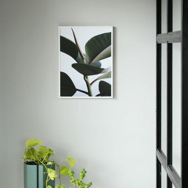 Paper Collective (ペーパーコレクティブ) ポスター 30×40cm Green home 02(グリーンホーム) 北欧/インテリア